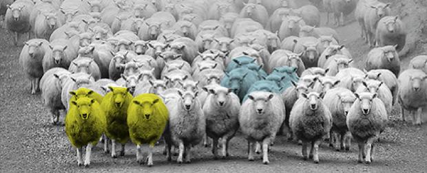 Identità sociale e unicità nelle scelte di marketing